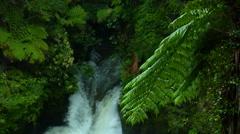 Rain Forest Waterfall Stock Footage