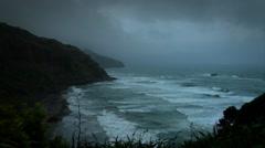 Maori Beach Morning New Zealand Stock Footage