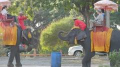 Tourists on elephants make selfies,Ayutthaya,Thailand Stock Footage