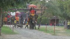 Couple on elephant tour,Ayutthaya,Thailand - stock footage