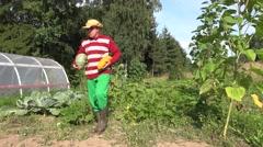 grower man vegetables - stock footage