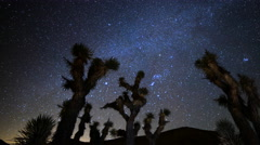 Astro Time Lapse of Constellation Orion Setting over Joshua Tree -Pan Right- - stock footage