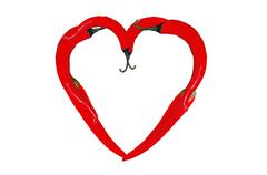 Heart symbol from red hot chili peppers isolated on white Stock Illustration
