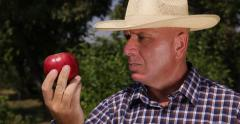 Gardner Man Showing Customers Best Farmland Apple Product Agriculture Industry Stock Footage