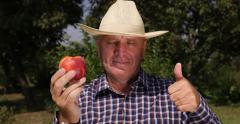 Best Peach Sweet Juicy Flavored Taste Fruit Farmer Thumbs Up Sign Recommend Stock Footage