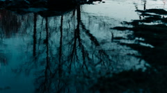 Reflection of trees in water Stock Footage