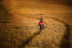Little boy playing outdoor on stubble field Stock Photos