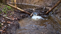 Small river in springtime forest. - stock footage
