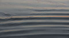 Beautiful sunset reflections on lake surface with thin ice, waves with sun Stock Footage