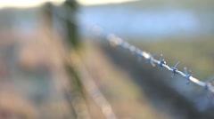 Closeup of barbed wire with defocused field in the background - stock footage