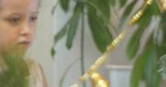 Girl is Putting a Golden Beads Garland New-Year Tree Pine Golden Bell-Garland Stock Footage