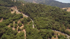 Aerial drone view over drought dry forest in northern california Stock Footage