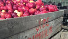 Stock Video Footage of A crate full of apples at a farmer's market