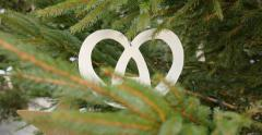 Alsace bretzel pretzel as Christmas Decoration on fir Tree Stock Footage