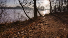 winter lake shore with trees - stock footage
