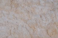 Woolly sheepskin background Stock Photos