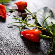 close up of orange hot chili peppers, sea salt, greenery on cracks black back - stock photo