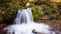 Time Lapse - Small Waterfall in fall Stock Footage