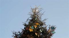 star on Christmas tree - stock footage