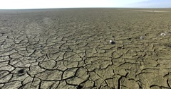 Dry lake bed with natural texture of cracked clay in perspective floor Stock Footage
