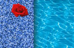 Swimming pool and red rose on tile ideal for backgrounds - stock photo