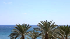 Blue ocean with many palms with wind Stock Footage