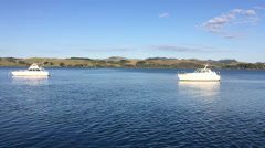 Mangonui harbour New Zealand Stock Footage