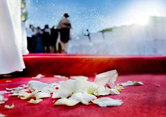 Outdoor ceremony. wedding petals of roses on red carpet Stock Photos