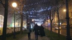 Illuminated tree alley Stock Footage