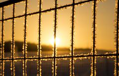 Stock Photo of The fence covered with snow in beams of a rising sun