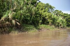 Amazon River Outdoors Stock Photos