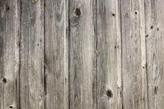 grungy real old spruce planks texture ready for your design - stock photo