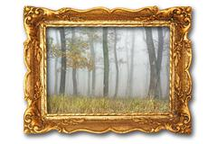image with misty forest on ancient picture frame, isolation over white with s - stock photo