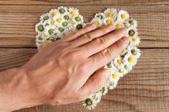Heart made of daisies flowers in wooden background, covered by an hand to rep Stock Photos