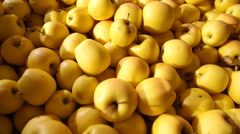 Large amount yellow apples Stock Footage