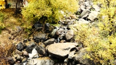 Big Rocky Riverbed Stock Footage