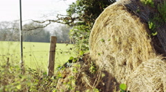 Bales of straw, with traffic passing in the background Stock Footage