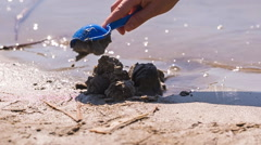 Digging with baby shovel toy in sand of lake shore Stock Footage