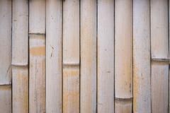 White brown bamboo wall texture background Stock Photos
