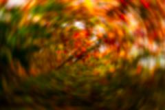 red orange swirl bokeh blurred abstract background - stock photo