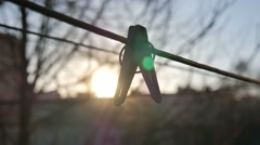 Clothespin on a Background of Sunrice - stock footage