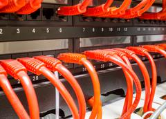 Close up of red network cables connected to switch - stock photo