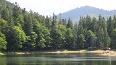 Lake Synevir in Carpathian Mountains, Ukraine Stock Footage