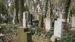 Graves on the Lychakiv Cemetery in Lviv, Ukraine Stock Footage