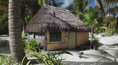 Establishing shot of a straw beach hut on the beach with palm trees around. Stock Footage