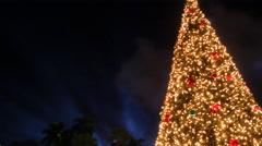 Christmas Tree Downtown Miami Stock Footage