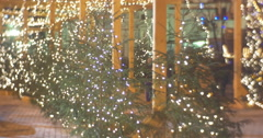 People at Park of Green Decorated Fir-Trees Laps Garlands Inslalled at a Wooden Stock Footage