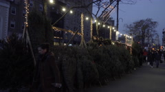 Christmas trees on sale on the street Greenwich Village Manhattan NYC night 4K Stock Footage