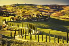Stock Photo of Tuscany, rural sunset landscape. Countryside farm, cypresses trees, green fie