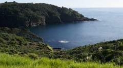 Goat Island New Zealand North Island - stock footage